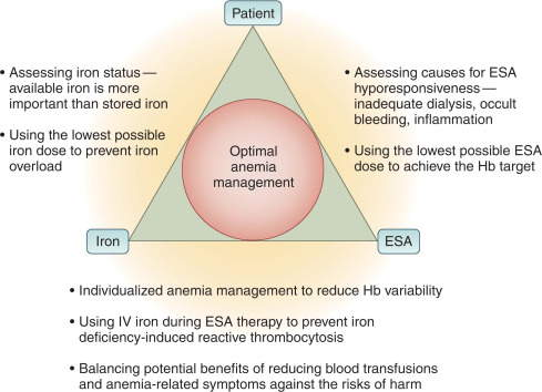 Anemia Management in Chronic and End-Stage Kidney Disease