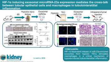 HIF-1α inducing exosomal microRNA-23a expression mediates the cross